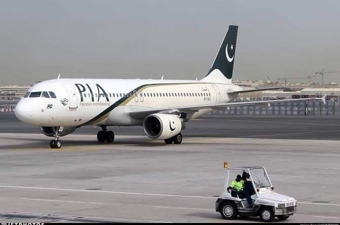 fake pilot licences in pakistan